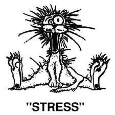 stresstips